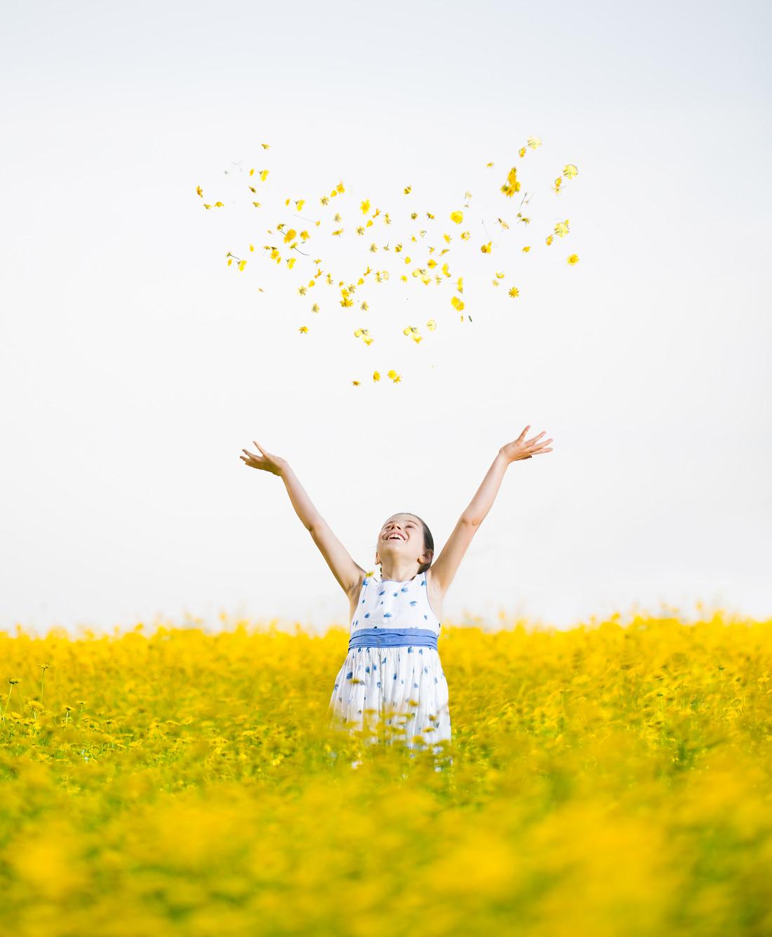 Campo de Flores Azul Amarelo