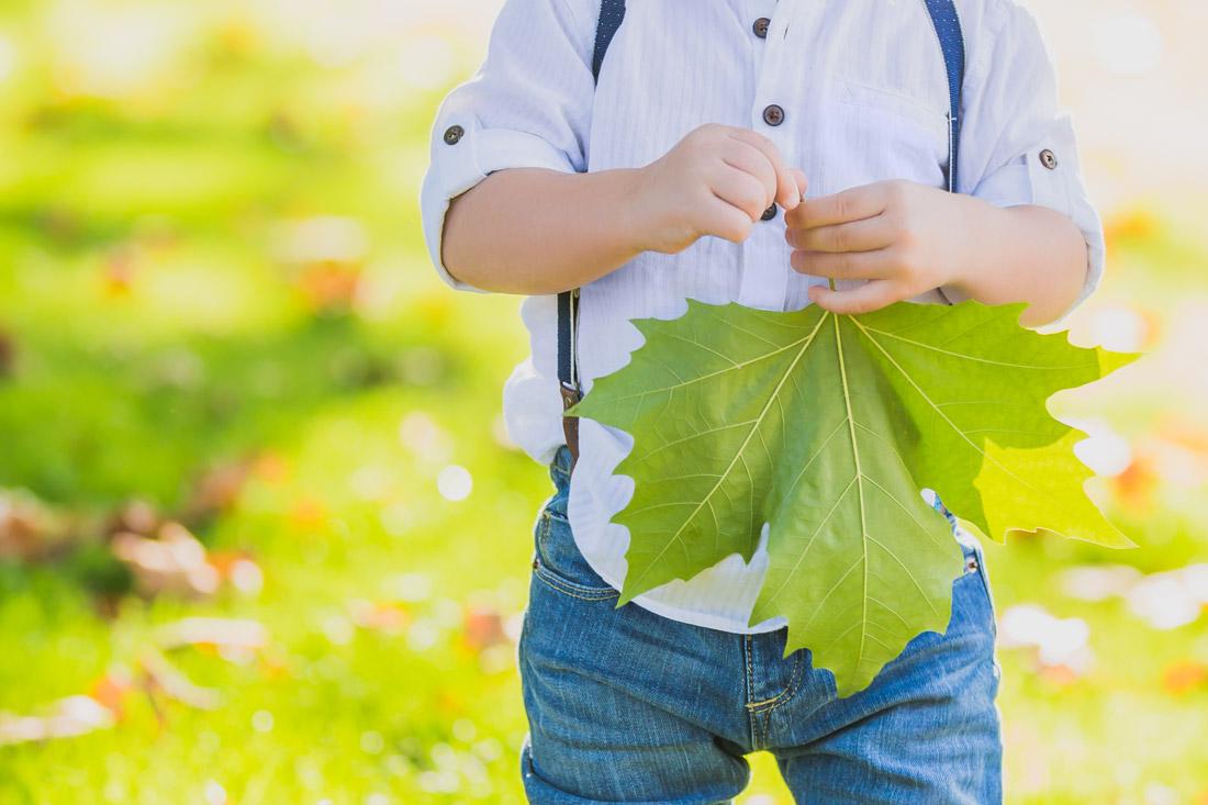 0006 familia folha jardim crianca igreja nossa senho de vagos
